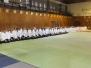 2004, Veszprémi edzőtábor