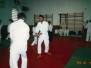 1999. október, Tatai nyílt nap